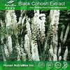 Natural Black Cohosh Extract, black cohosh powder, black cohosh root extract