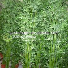 De interior& al aire libre decorativo de bambú artificiales. Artificiales de china de bambú para venta al por mayor