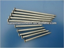 concrete steel nail / iron nail