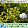 China facrory supply high quality Ferulic acid 1135-24-6