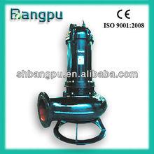 Raw Water Submersible Pump