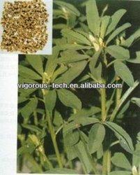 high quality fenugreek extract /50% furostanol saponin/fenugreek p.e.