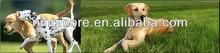 2014 plastic pet gps tracking dog leash collar dog hunting