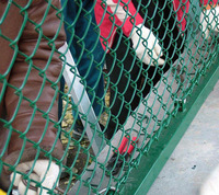 anping galvanized chain link fence/plastic fence factory