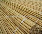 bamboo garden poles
