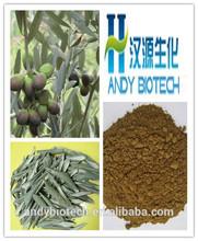 High Quality 20% Hydroxytyrosol Olive Leaf Extract Powder