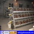 Pollos vivos a las jaulas de transporte, de alta calidad, el precio bajo, china proveedor profesional