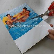 magnet sheet printable