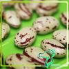 2013 Dried Round Bean/ Light Speckled Kidney Bean / Sugar Beans/ Chinese Bean Crop