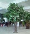 decorativos de madeira coberta ficus árvore artificial