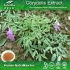 tetrahydropalmatine extract , tetrahydropalmatin powder , tetrahydropalmatine(corydalis yanhusuo extract)