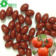 natural Lycopene tomatos softgel women beauty anti aging capsules