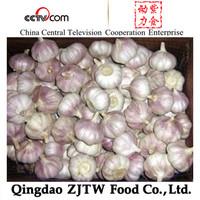 5Cm Garlic 10KG/ctn Garlic