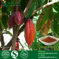 Buena calidad del cacao extracto de la semilla, de cacao extracto de frijol, cacao en polvo extracto