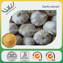 NATURAL garlic powder extract,ingredient for heart Garlic extract 1%~6% allicin,manufacturer supply garlic extract allicin