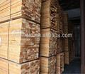 Paulownia China fir cedro pinheiro madeira serrada para venda