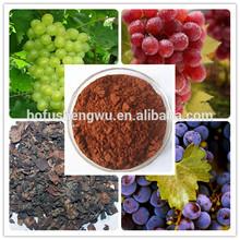 grape seed p.e opc/grape seed plant extract powder/grape seed p. e