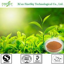 decaffeinated green tea extract bulk powder,green tea extract as antioxidant for cosmetic
