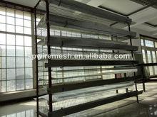 metal quail cage