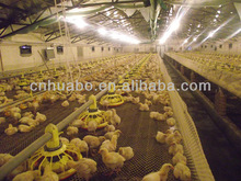 Chicken poultry breeding houses
