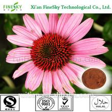 new season natural echinacea purpurea powder