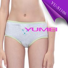 Girls cartoon printed underwear panties