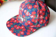 Custom snapback cap/snapback hats with embroidery/print logo