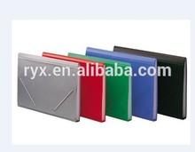 2014pp the elastic band organ bag
