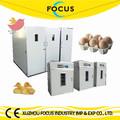incubadora do ovo automático para aves codorna pato ganso