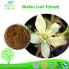 NutraMax Supply-Agathosma Betulina Extract, Agathosma Betulina Extract Powder, Natural Agathosma Betulina Extract