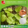 High quality yohimbine hcl 90ct.-ethitech nutrition