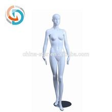fashion whole body stand female model, body meridian model, female body organ