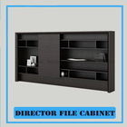 News Design Director Office Filing Cabinet of Wooden Materia