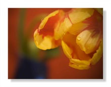 Customizable home decorative printing art photo painting