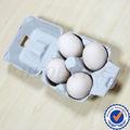 de alta qulaity 4 pieza de cartón de huevos de embalaje