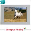3D de impresión lenticular 3D caballo fotos para el regalo