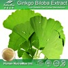ginkgo biloba extract supplier,ginkgo biloba herbal extract,flavonoids ginkgo biloba extract usp grade