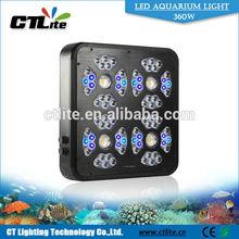 wall mounted aquarium acrylic fish tank marine aquarium led lighting