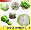Produto de alta qualidade china fornecedor novas invenções engraçado alface ou repolho guarda-chuva dobrável com lótus vegetabrella como presente