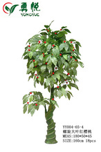 160cm height spiral trunk big leaves red cherry tree