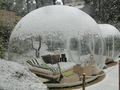 Clear inflatable bubble tree dome tent for camping