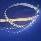 high quality led strip 3528 IP20 CE ROHS 120 led per meter