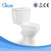Healthful restroom sanitary porcelain toilet seat