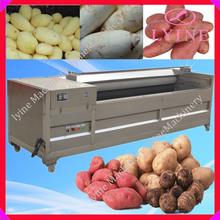vegetable washing machine/carrot washing machine/fruit washing machine