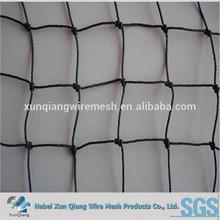 Extruded Diamond PP Anti Bird Netting
