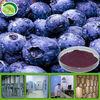 Acai berry freeze dried powder
