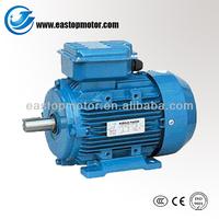 MY Series Single Phase 1000 watt motor