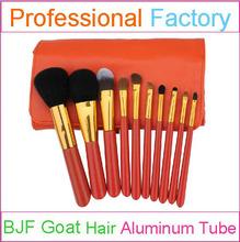 10pcs professional makeup set with perfect makeup brushes