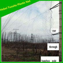 black soft Nylon mist bird net for trapping bird