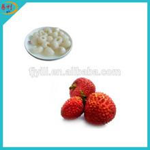 Supply new season best canned lychee fruit